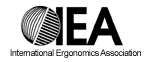 International Ergonomics Association (IEA)